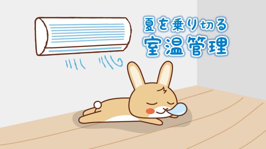 夏の室温管理に関する記事キャッチ画像