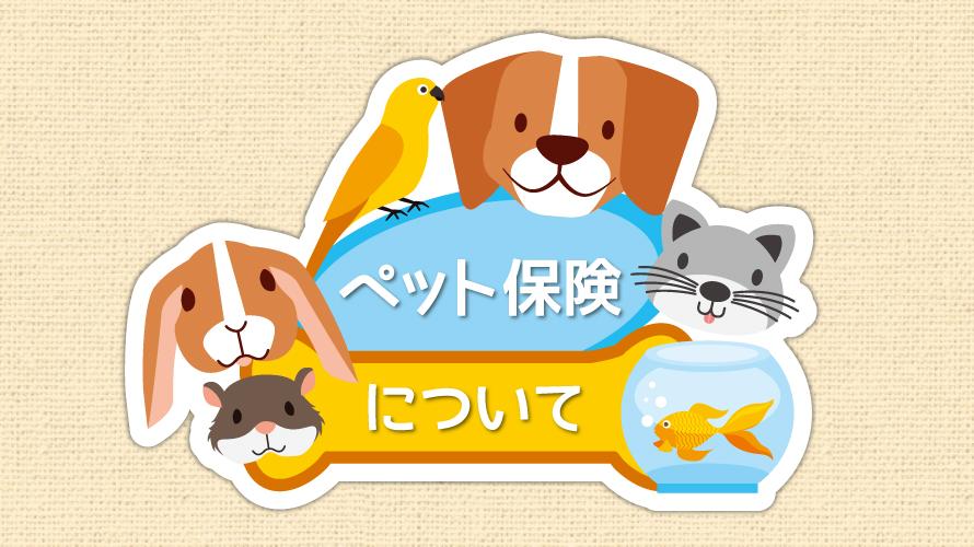 ペット保険に関する記事キャッチ画像